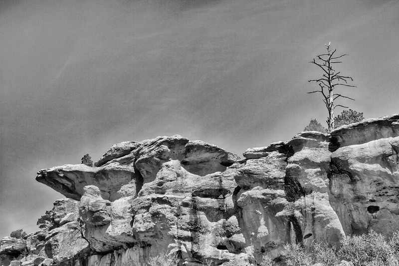 Castlewood Canyon Sentry